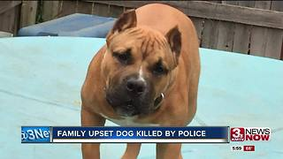 Family upset dog shot, killed during incident