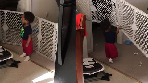 This Baby Gate Was NOT Built To Withstand This Kid's Strength!
