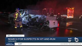 Group sought in SR-94 hit-and-run