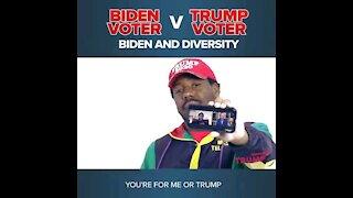 Biden Voters vs Trump Voters