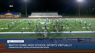 Virtual Sports Viewing