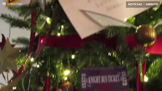 Fãs de Harry Potter vão amar esta árvore de natal!