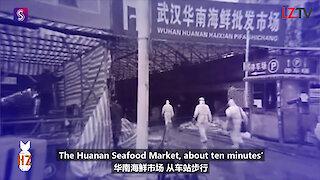 Visiting Wuhan China: Huanan Seafood Market