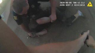 Wyandotte police arrest home invasion suspect