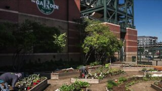 All-Star Game community projects include garden improvements