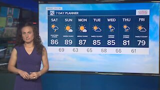 Forecast - Partly sunny and humid, with scattered showers and storms. Highs in the 80's