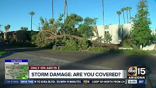 Check your insurance: Are you monsoon ready?