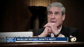 Mueller Report: What's Next?