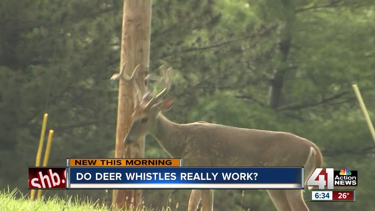 Do deer whistles really work?