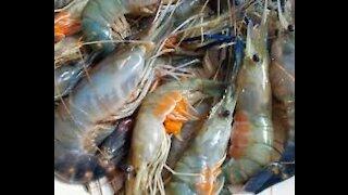 Homemade Crispy Shrimp Recipe Easy Crispy Toast Shrimp Thai Food