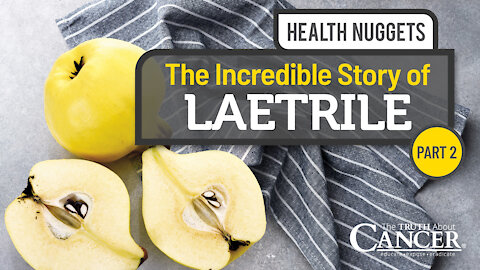 The Truth About Cancer Presents: Health Nuggets - The Incredible Story of Laetrile   Part 2