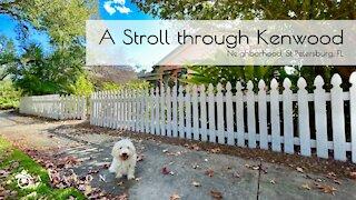 A Stroll Through Kenwood Neighborhood St. Petersburg Fl