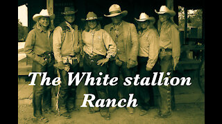 A year on the White Stallion Ranch