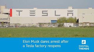 Elon Musk dares arrest after a Tesla factory reopens