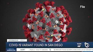 COVID-19 variant discovered in San Diego County