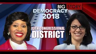 Michigan 13th Congressional District