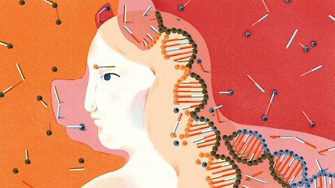 HUMAN PENISES SEIZED, HUMAN/ MONKEY EMBRYOS CREATED and more bizarre news