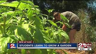 Internship offers organic gardening experience for high school students