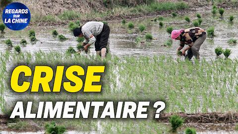 La Chine minimise l'impact sur la production de céréales ; La chute d'Evergrande continue