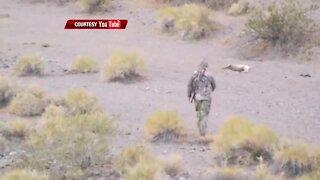 FULL 2012 REPORT | Varmint hunts in Clark County