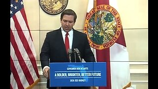 Governor DeSantis' first year in office
