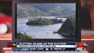 Scottish island up for auction