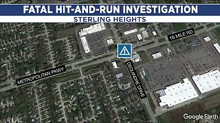 Police search for driver in deadly hit-and-run in Sterling Heights