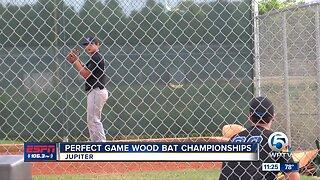 Perfect game Wood Bat championships