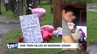 Teen killed in weekend roll-over crash