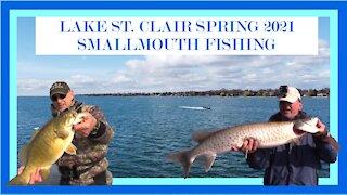 Lake St. Clair Smallmouth Fishing Spring 2021