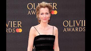 Gillian Anderson reportedly splits with Peter Morgan split