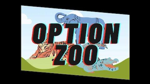 Option Zoo Intro Video