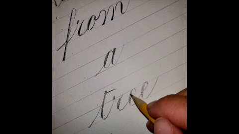 Advice from a Tree: Pencil Copperplate Calligraphy ad