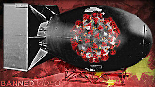 Joe Hoft: China Dropped COVID Bomb On The World To Save Their Economy!