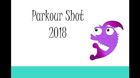 Parkour Shot 2018