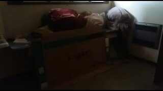 SOUTH AFRICA - Johannesburg - Homeless shelter (videos) (4VS)
