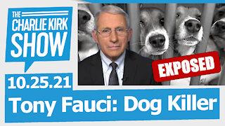Tony Fauci: Dog Killer   The Charlie Kirk Show LIVE 10.25.21