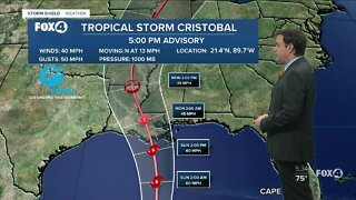 Tropical Storm Cristobal moves into the Gulf