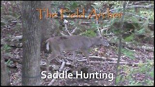 BOWHUNTING: Saddle Deer Hunting