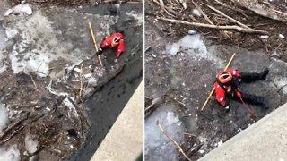 Heroic coastguard saves tiny puppy from freezing river