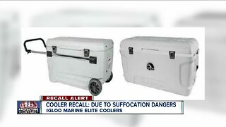 ALERT: Cooler recalled due to entrapment, suffocation risk