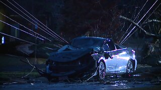 Woman hospitalized after tree falls onto her car in Westlake