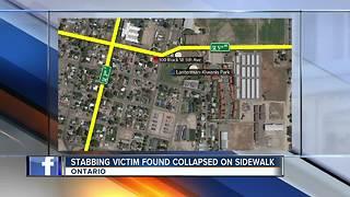 Stabbing victim found collapsed on sidewalk