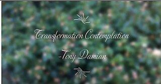 Transformation Contemplation