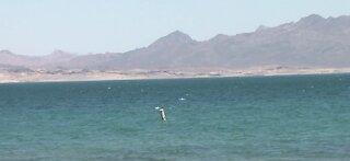 New recreation trail near Nevada-Arizona state line