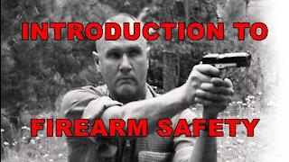 ECAS: Firearms Safety