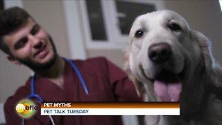 PET TALK TUESDAY - PET MYTHS