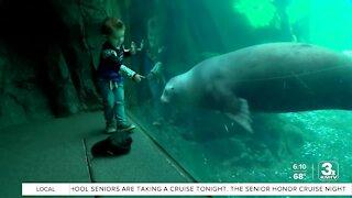 Omaha's Henry Doorly Zoo welcomes harbor seals