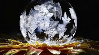 Mesmerising images and footage show beautiful frozen bubbles becoming ice in real time