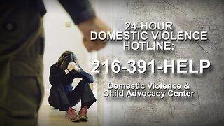 Crime drops except domestic violence calls